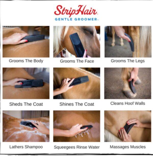Der StripHair Gentle Groomerist ein äusserst handliches Putzutensil mit stimulierendem Massage-Effekt - antibakteriell und antifungal.
